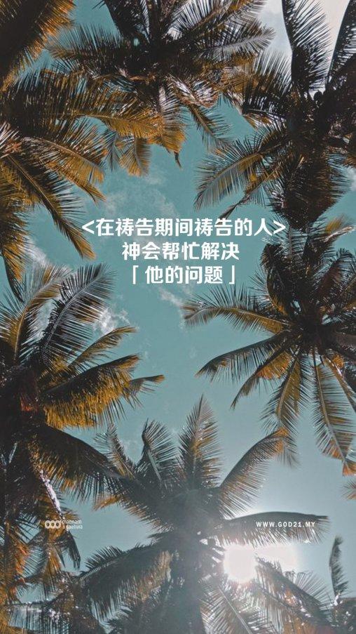 郑明析,摄理,箴言话语